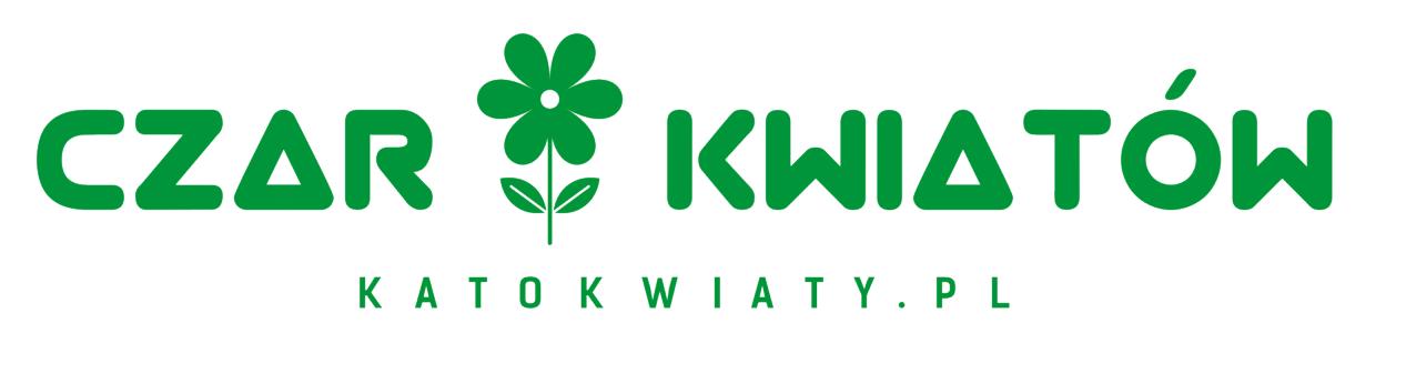 Kwiaciarnia Czar Kwiatów - Logo